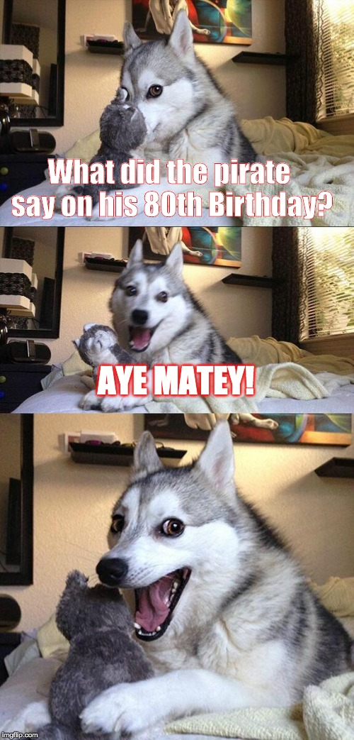 The Old Man and the Sea | What did the pirate say on his 80th Birthday? AYE MATEY! | image tagged in memes,bad pun dog | made w/ Imgflip meme maker