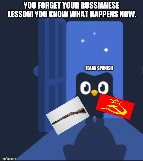 Duolingo bird | YOU FORGET YOUR RUSSIANESE LESSON! YOU KNOW WHAT HAPPENS NOW. LEARN SPANISH | image tagged in duolingo bird | made w/ Imgflip meme maker