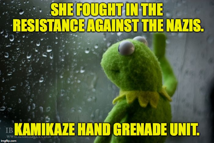 kermit window | SHE FOUGHT IN THE RESISTANCE AGAINST THE NAZIS. KAMIKAZE HAND GRENADE UNIT. | image tagged in kermit window | made w/ Imgflip meme maker