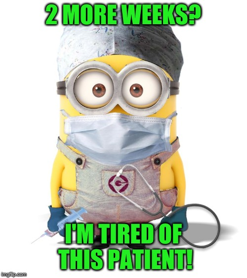 Minion Nurse | 2 MORE WEEKS? I'M TIRED OF THIS PATIENT! | image tagged in minion nurse | made w/ Imgflip meme maker