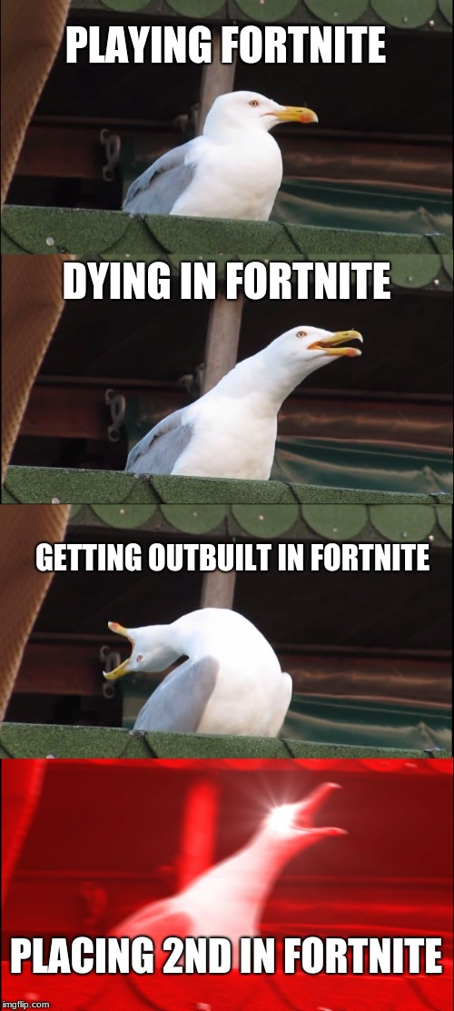 Fortnite Seagull | PLAYING FORTNITE DYING IN FORTNITE GETTING OUTBUILT IN FORTNITE PLACING 2ND IN FORTNITE | image tagged in memes,inhaling seagull,fortnite meme | made w/ Imgflip meme maker