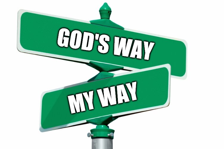 Blank Street Signs | GOD'S WAY MY WAY | image tagged in blank street signs | made w/ Imgflip meme maker