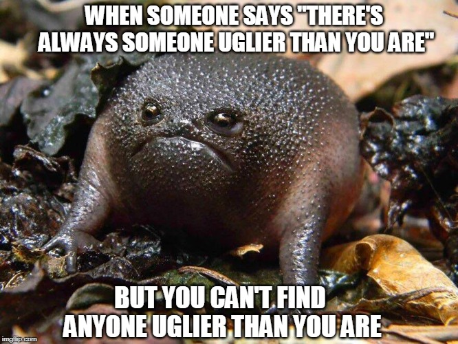 "The Ugliest Little 'Whatever The Heck That Thing Is"", That You've Ever Seen. 