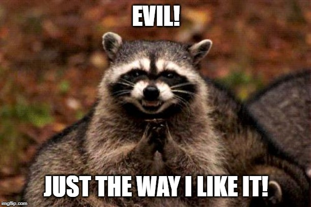 Evil Plotting Raccoon Meme | EVIL! JUST THE WAY I LIKE IT! | image tagged in memes,evil plotting raccoon | made w/ Imgflip meme maker