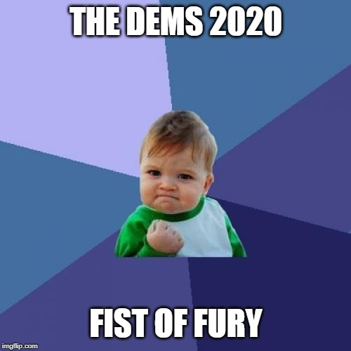 Success Kid | THE DEMS 2020 FIST OF FURY | image tagged in memes,success kid | made w/ Imgflip meme maker