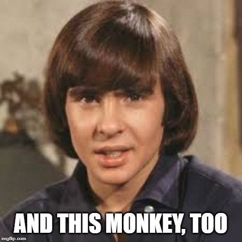 davy jones | AND THIS MONKEY, TOO | image tagged in davy jones | made w/ Imgflip meme maker