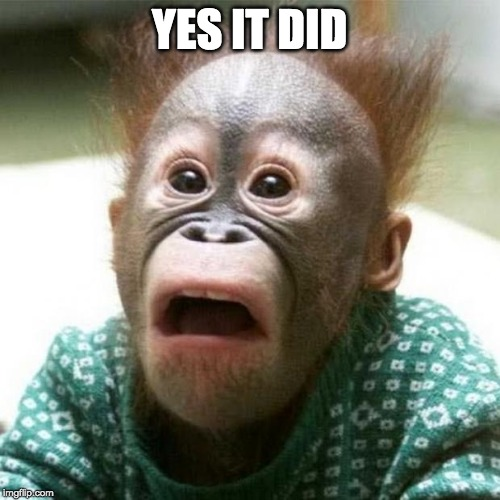 Shocked Monkey | YES IT DID | image tagged in shocked monkey | made w/ Imgflip meme maker