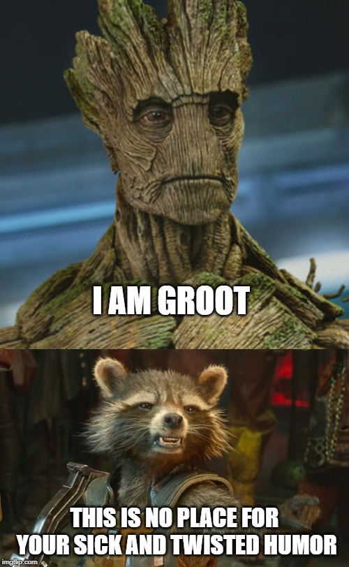 I AM GROOT THIS IS NO PLACE FOR YOUR SICK AND TWISTED HUMOR | image tagged in rocket raccoon,i am groot | made w/ Imgflip meme maker