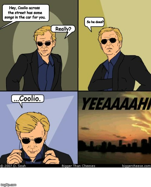 Horatio Caine | Hey, Coolio across the street has some songs in the car for you. Really? So he does? ...Coolio. | image tagged in horatio caine | made w/ Imgflip meme maker
