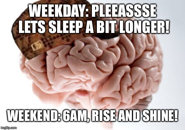 Scumbag Brain | WEEKDAY: PLEEASSSE LETS SLEEP A BIT LONGER! WEEKEND: 6AM, RISE AND SHINE! | image tagged in memes,scumbag brain,AdviceAnimals | made w/ Imgflip meme maker