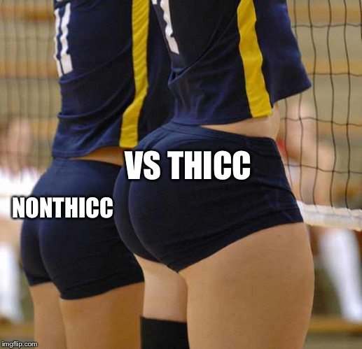 Volleyball Thicccness | VS THICC NONTHICC | image tagged in volleyball thicccness | made w/ Imgflip meme maker