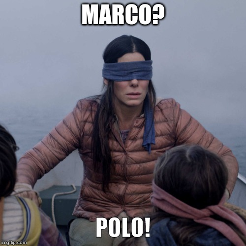 I'm legally blonde she's legally blind | MARCO? POLO! | image tagged in memes,bird box,funny,blind,games | made w/ Imgflip meme maker