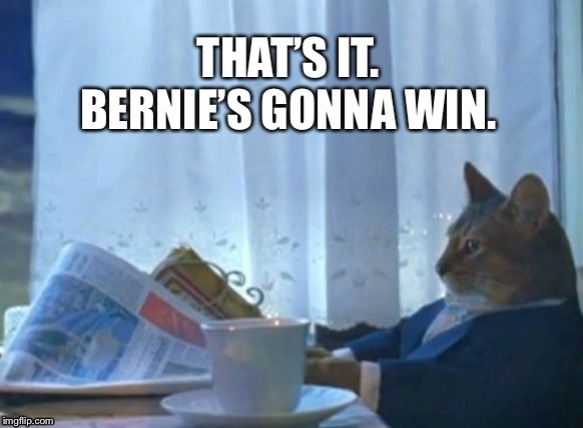 image tagged in cat,bernie sanders,bernie | made w/ Imgflip meme maker