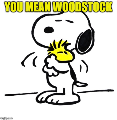 snoopy and woodstock | YOU MEAN WOODSTOCK | image tagged in snoopy and woodstock | made w/ Imgflip meme maker