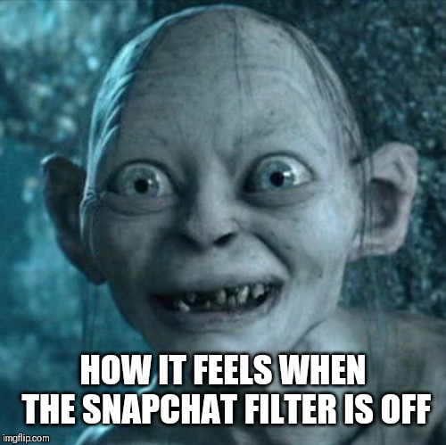 Gollum Meme | HOW IT FEELS WHEN THE SNAPCHAT FILTER IS OFF | image tagged in memes,gollum | made w/ Imgflip meme maker