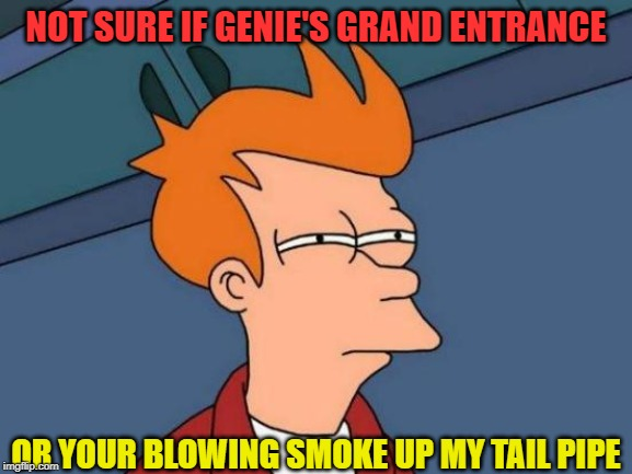 Futurama Fry Meme | NOT SURE IF GENIE'S GRAND ENTRANCE OR YOUR BLOWING SMOKE UP MY TAIL PIPE | image tagged in memes,futurama fry | made w/ Imgflip meme maker