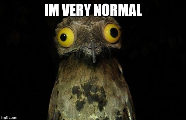 Weird Stuff I Do Potoo | IM VERY NORMAL | image tagged in memes,weird stuff i do potoo | made w/ Imgflip meme maker