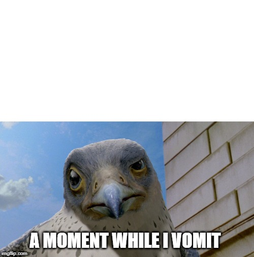 """___? A moment while I VOMIT."" 