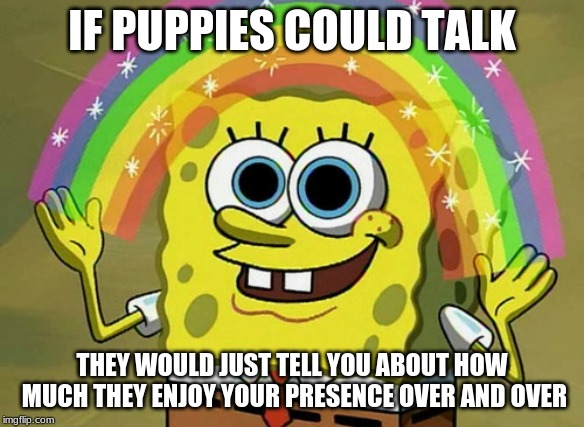 Imagination Spongebob |  IF PUPPIES COULD TALK; THEY WOULD JUST TELL YOU ABOUT HOW MUCH THEY ENJOY YOUR PRESENCE OVER AND OVER | image tagged in memes,imagination spongebob | made w/ Imgflip meme maker