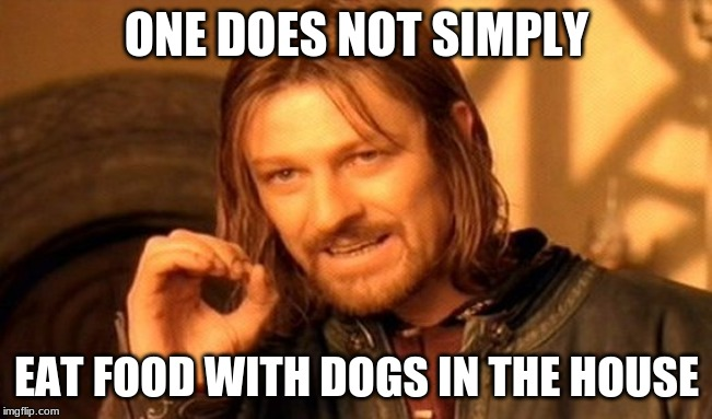 One Does Not Simply |  ONE DOES NOT SIMPLY; EAT FOOD WITH DOGS IN THE HOUSE | image tagged in memes,one does not simply | made w/ Imgflip meme maker