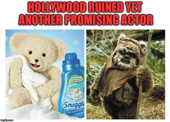 Drugs and Alcohol ruined the Snuggle Bear | HOLLYWOOD RUINED YET ANOTHER PROMISING ACTOR | image tagged in hollywood,drugs are bad,booze,funny | made w/ Imgflip meme maker