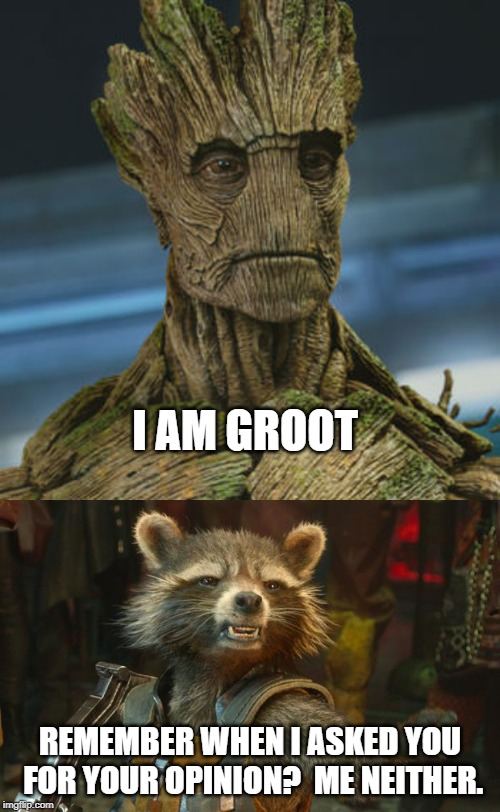 I AM GROOT REMEMBER WHEN I ASKED YOU FOR YOUR OPINION?  ME NEITHER. | image tagged in rocket raccoon,i am groot | made w/ Imgflip meme maker