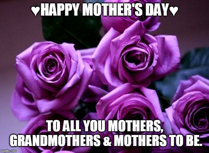 Happy Mothers DAy | ♥HAPPY MOTHER'S DAY♥ TO ALL YOU MOTHERS, GRANDMOTHERS & MOTHERS TO BE. | image tagged in happy mother's day,9 out of 10 moms recommend,love you,moms,mothers day,mother in law | made w/ Imgflip meme maker