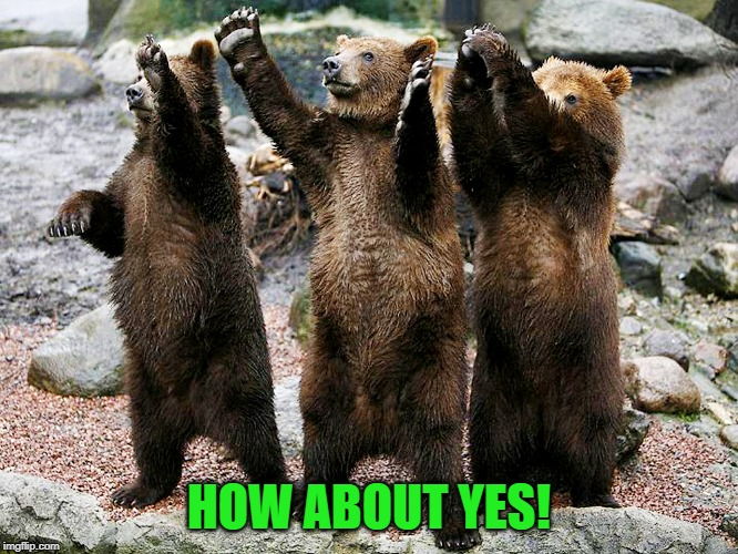 bears – how about yes | HOW ABOUT YES! | image tagged in bears  how about yes | made w/ Imgflip meme maker