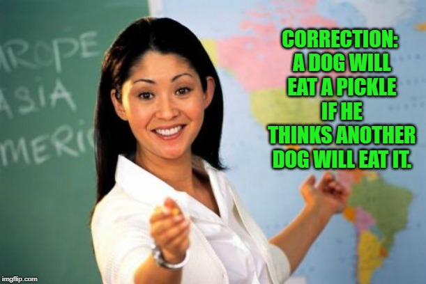 Unhelpful High School Teacher Meme | CORRECTION: A DOG WILL EAT A PICKLE IF HE THINKS ANOTHER DOG WILL EAT IT. | image tagged in memes,unhelpful high school teacher | made w/ Imgflip meme maker