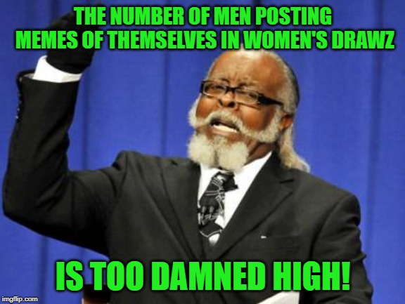 Looks like we have another one | THE NUMBER OF MEN POSTING MEMES OF THEMSELVES IN WOMEN'S DRAWZ IS TOO DAMNED HIGH! | image tagged in memes,too damn high,nixieknox | made w/ Imgflip meme maker