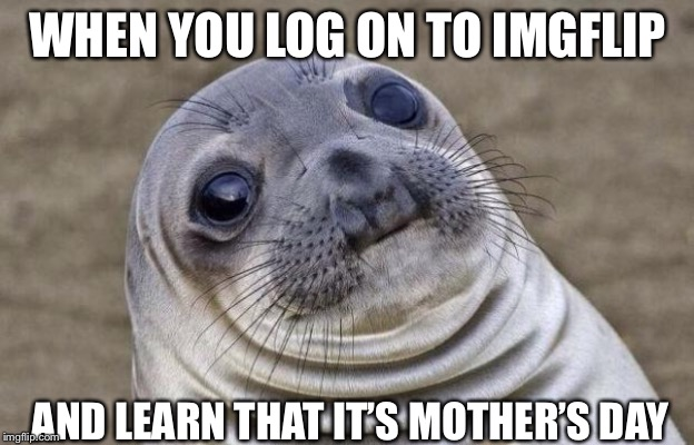 Awkward Moment Sealion | WHEN YOU LOG ON TO IMGFLIP AND LEARN THAT IT'S MOTHER'S DAY | image tagged in memes,awkward moment sealion | made w/ Imgflip meme maker