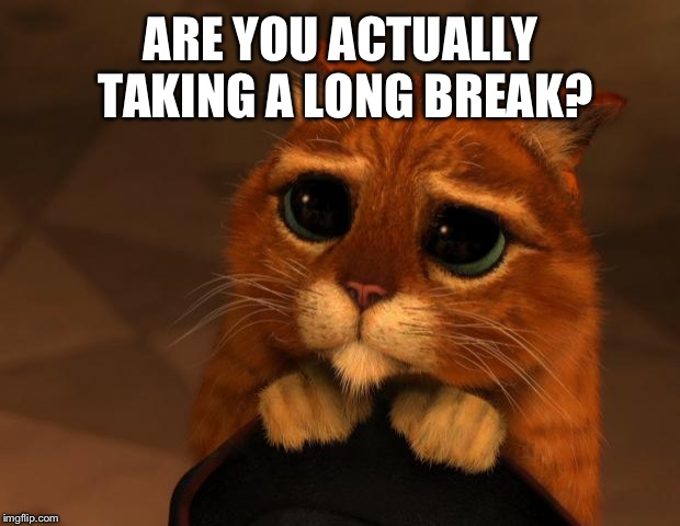 puss in boots eyes | ARE YOU ACTUALLY TAKING A LONG BREAK? | image tagged in puss in boots eyes | made w/ Imgflip meme maker