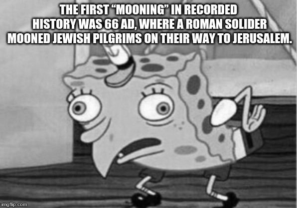 "THE FIRST ""MOONING"" IN RECORDED HISTORY WAS 66 AD, WHERE A ROMAN SOLIDER MOONED JEWISH PILGRIMS ON THEIR WAY TO JERUSALEM. 