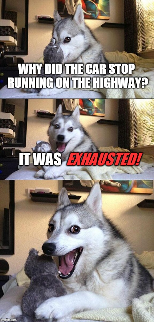 Bad Pun Dog Meme | WHY DID THE CAR STOP RUNNING ON THE HIGHWAY? IT WAS EXHAUSTED! | image tagged in memes,bad pun dog | made w/ Imgflip meme maker