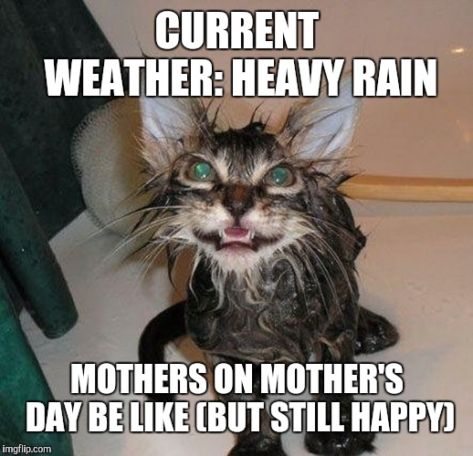 Wet Mother's be like | CURRENT WEATHER: HEAVY RAIN MOTHERS ON MOTHER'S DAY BE LIKE (BUT STILL HAPPY) | image tagged in wet | made w/ Imgflip meme maker