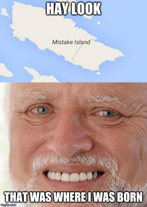 HAY LOOK; THAT WAS WHERE I WAS BORN | image tagged in hide the pain harold | made w/ Imgflip meme maker