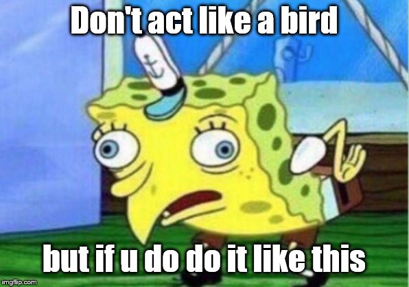 Mocking Spongebob Meme | Don't act like a bird but if u do do it like this | image tagged in memes,mocking spongebob | made w/ Imgflip meme maker
