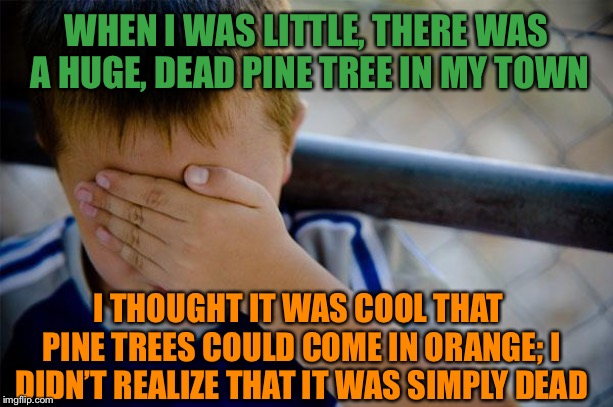 But I do think it would be cool if there were Trump spruces |  WHEN I WAS LITTLE, THERE WAS A HUGE, DEAD PINE TREE IN MY TOWN; I THOUGHT IT WAS COOL THAT PINE TREES COULD COME IN ORANGE; I DIDN'T REALIZE THAT IT WAS SIMPLY DEAD | image tagged in memes,confession kid | made w/ Imgflip meme maker
