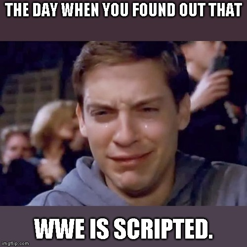 Tobey Maguire crying | THE DAY WHEN YOU FOUND OUT THAT WWE IS SCRIPTED. | image tagged in tobey maguire crying | made w/ Imgflip meme maker