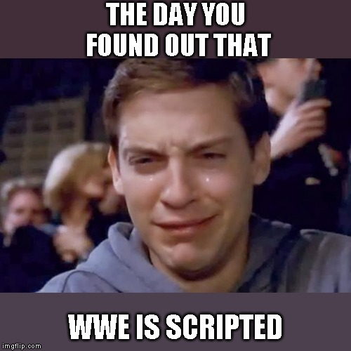 Tobey Maguire crying | THE DAY YOU FOUND OUT THAT WWE IS SCRIPTED | image tagged in tobey maguire crying | made w/ Imgflip meme maker
