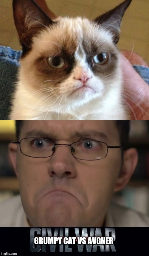 Spoiler alert: in the end they become pals when they find out both their mother's names are Martha | GRUMPY CAT VS AVGNER | image tagged in memes,marvel civil war,grumpy cat,avgn,angry video game nerd,cat | made w/ Imgflip meme maker