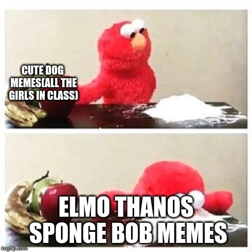 elmo cocaine | CUTE DOG MEMES(ALL THE GIRLS IN CLASS) ELMO THANOS SPONGE BOB MEMES | image tagged in elmo cocaine | made w/ Imgflip meme maker