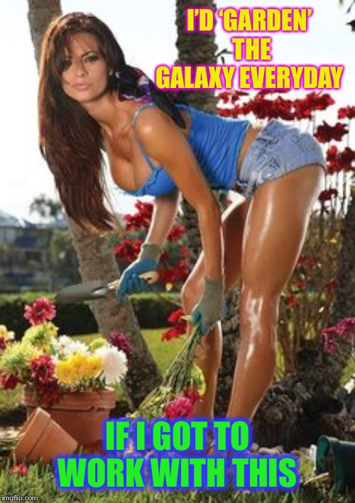 Hot Female Gardener | I'D 'GARDEN' THE GALAXY EVERYDAY IF I GOT TO WORK WITH THIS | image tagged in hot female gardener | made w/ Imgflip meme maker