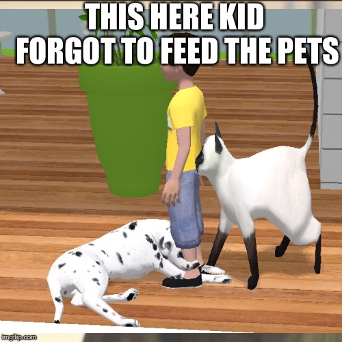 THIS HERE KID FORGOT TO FEED THE PETS | image tagged in i have no idea what i am doing | made w/ Imgflip meme maker