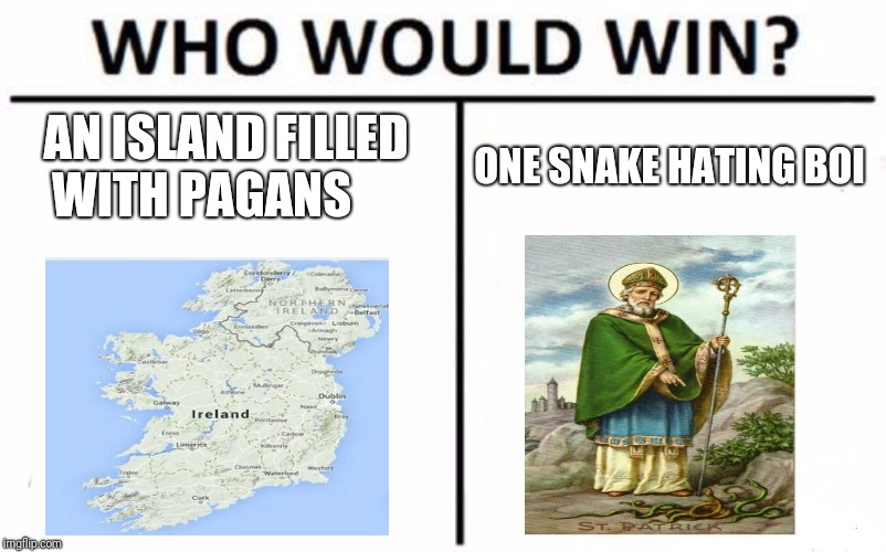 Who Would Win? Meme | AN ISLAND FILLED WITH PAGANS ONE SNAKE HATING BOI | image tagged in memes,who would win | made w/ Imgflip meme maker