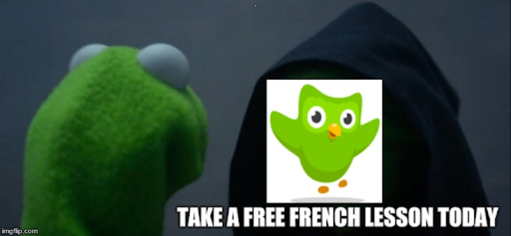 R | image tagged in duolingo bird,duolingo | made w/ Imgflip meme maker