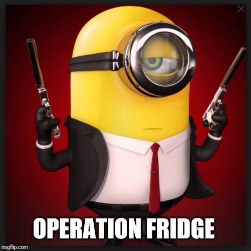 Assassin Minion | OPERATION FRIDGE | image tagged in assassin minion | made w/ Imgflip meme maker