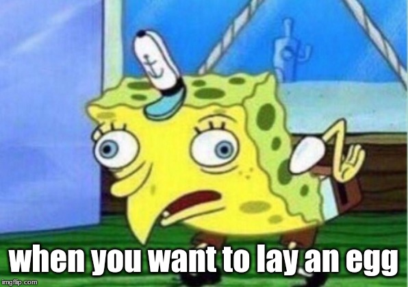 Mocking Spongebob Meme |  when you want to lay an egg | image tagged in memes,mocking spongebob | made w/ Imgflip meme maker