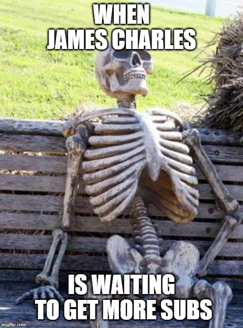 Waiting Skeleton Meme | WHEN JAMES CHARLES IS WAITING TO GET MORE SUBS | image tagged in memes,waiting skeleton | made w/ Imgflip meme maker
