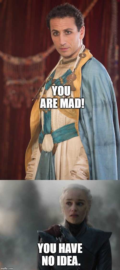 Madness? This is Dracarys! | YOU ARE MAD! YOU HAVE NO IDEA. | image tagged in game of thrones,daenerys targaryen | made w/ Imgflip meme maker